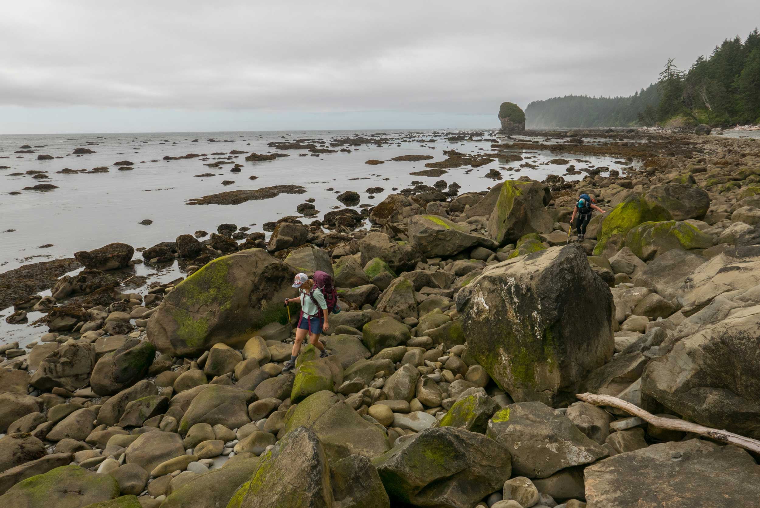 Hiking through rocky coast on Olympic Peninsula