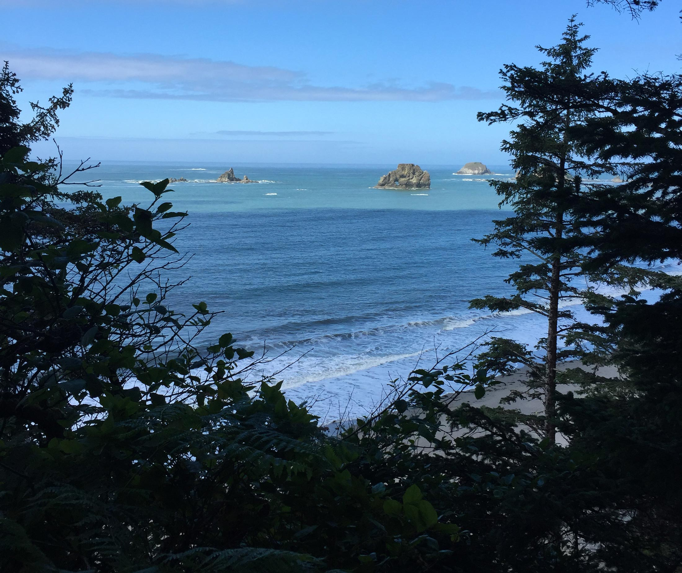 Sea stacks off the coast of Olympic National Park in Washington