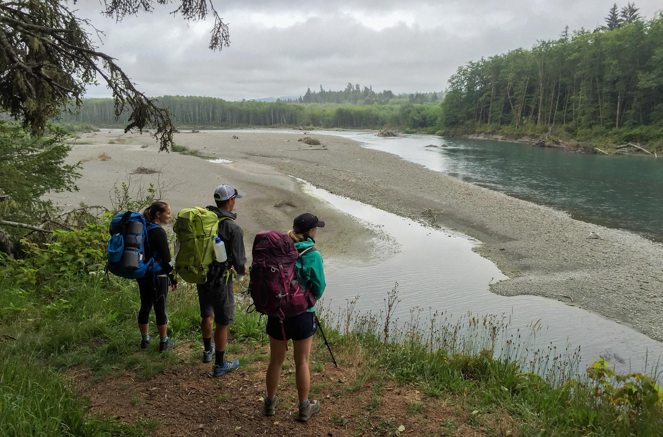 End your trip along the banks of the Hoh River on your way to the Oil City Trailhead
