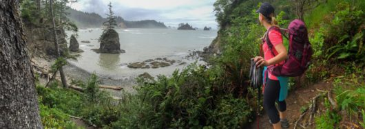 backpacking south coast in olympic national park