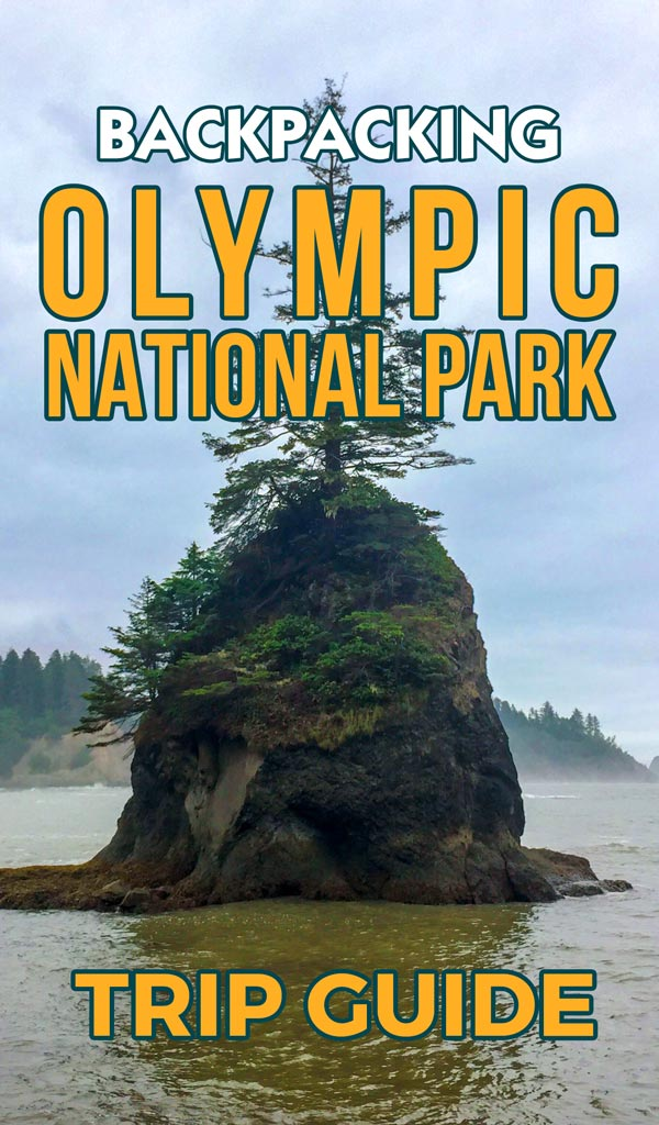 Guide to Backpacking Olympic National Park South Coast